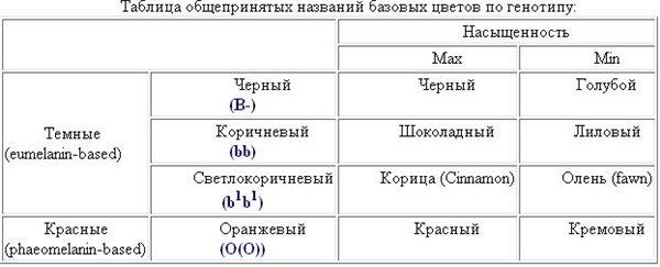 таблица базовых цветов по генотипу